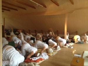 Yogapass på Hannemo kursgård